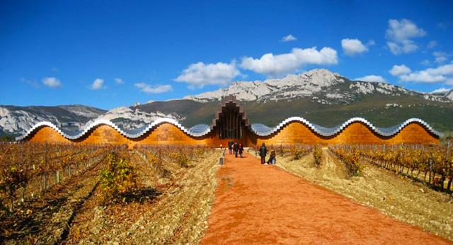 Bogeda Ysios winery
