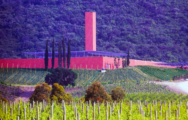 Rocca di Frassinello Vineyard